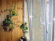ПВХ окна Проплекс для балкона